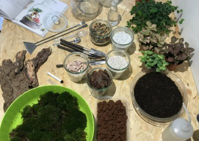 workshop-terrarium-1