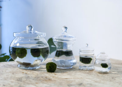 DOT-ROOM-MARIMO