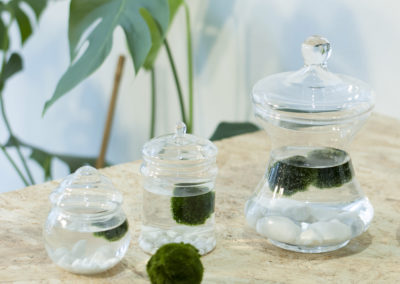 DOT-ROOM-MARIMO-2