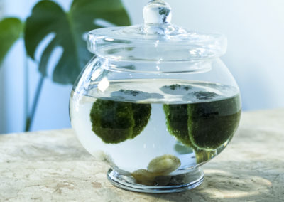 DOT-ROOM-MARIMO-4